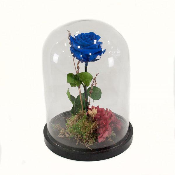 Rosa eterna azul en cúpula de cristal a domicilio en Toledo.