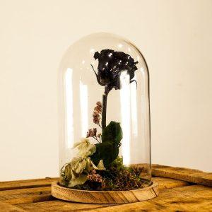 Rosa eterna negra en cúpula de cristal a domicilio en Toledo.
