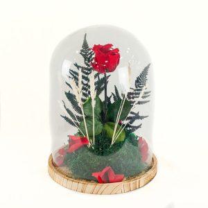 Rosa eterna roja en cúpula de cristal a domicilio en Toledo.