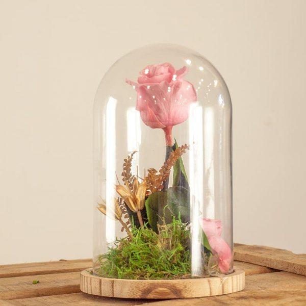 Rosa eterna rosa en cúpula de cristal a domicilio en Toledo.