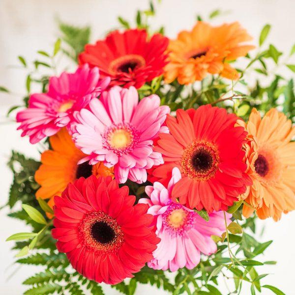 Detalle de Ramo de flores compuesto de Gerberas a domicilio en Toledo
