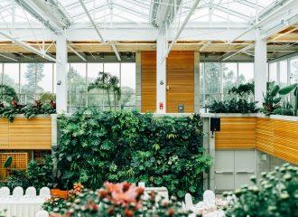 Tendencia en jardinería: Jardines verticales.