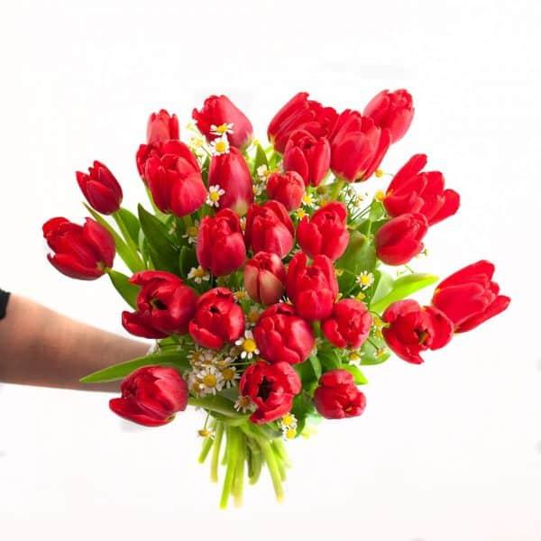Enviar Ramo de tulipanes a domicilio en Toledo