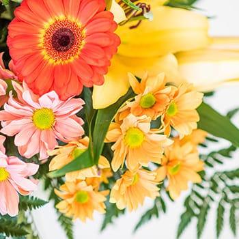 Flores a domicilio en Toledo.