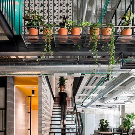 decoracion-con-plantas-interior-4 (1)